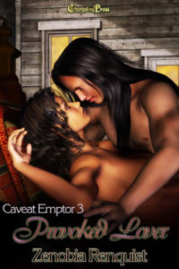 Cover - Provoked Lover (Caveat Emptor 3)