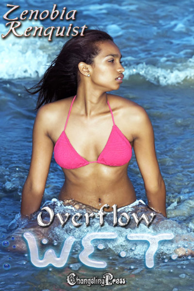 Cover - Overflow (Wet)